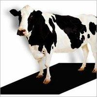 EVA Cow Mat