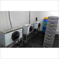 Curd Incubation Room
