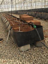 Trough Planters