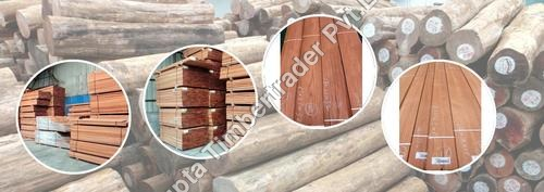 Golden Teak Wood
