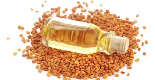 Fenugreek Oil/Extract