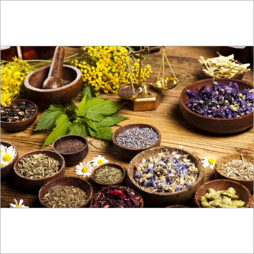 Ayurvedic & Herbal PCD Pharma In Giridih