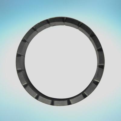 16 Pole Rotter Magnet