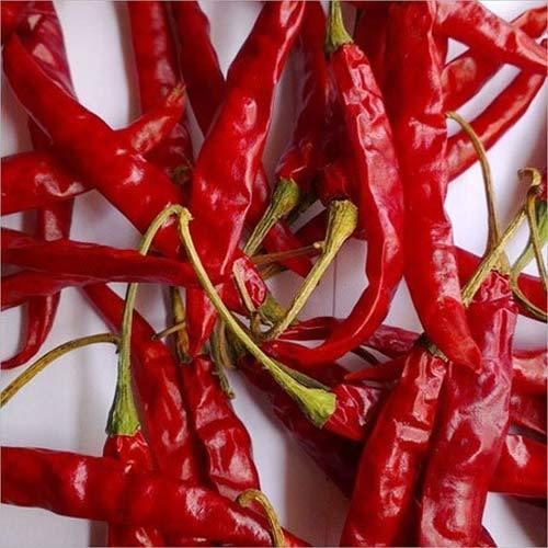 Best Quality Teja Red Chilli
