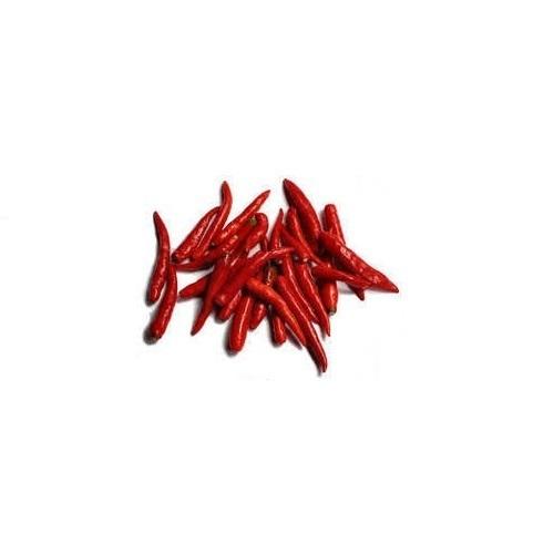 Dandicut Teja Red Chilli