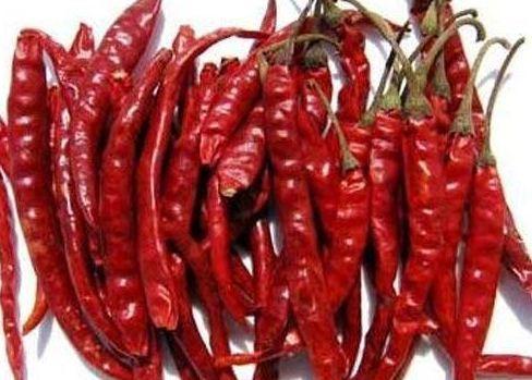 Teja Dry Chilli