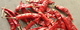 S7 Sannam Red Chilli