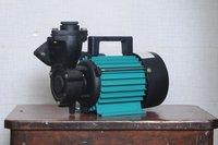 Mini Mono Block Pump