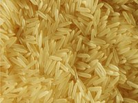 Sharbati Golden Basmati Rice