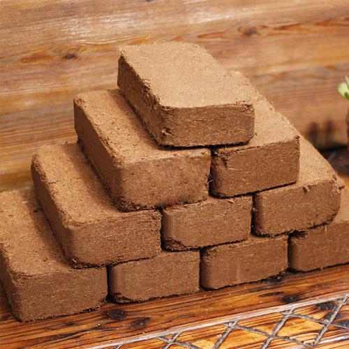 650 GM Cocopeat Block
