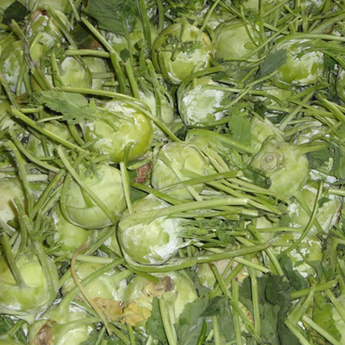 Organic Vegetables Suppliers, Exporters, Manufacturers