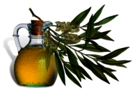 Tea Tree Oil/MELALEUCA ALTERNIFOLIA OIL