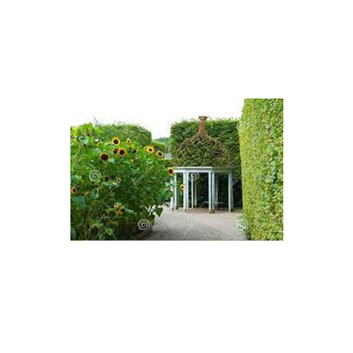 Outdoor Garden Gazebo
