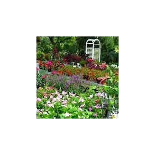 Plants And Nursery Services