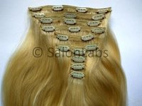 Pure Remy Clip On extensions
