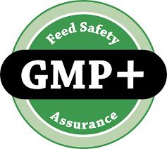 GMP Certification in panaji