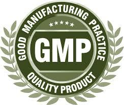 GMP Certification in Chennai