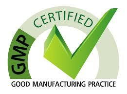 GMP Certification in Raipur