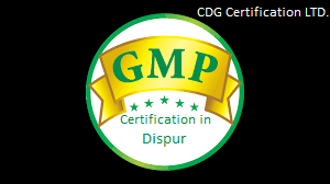 GMP Certification in dispur