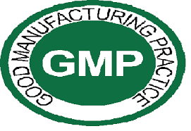 GMP Certification in Pune