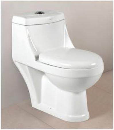 One Piece Toilet - 2006