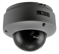 2 Mega Pixel IP Dome Camera