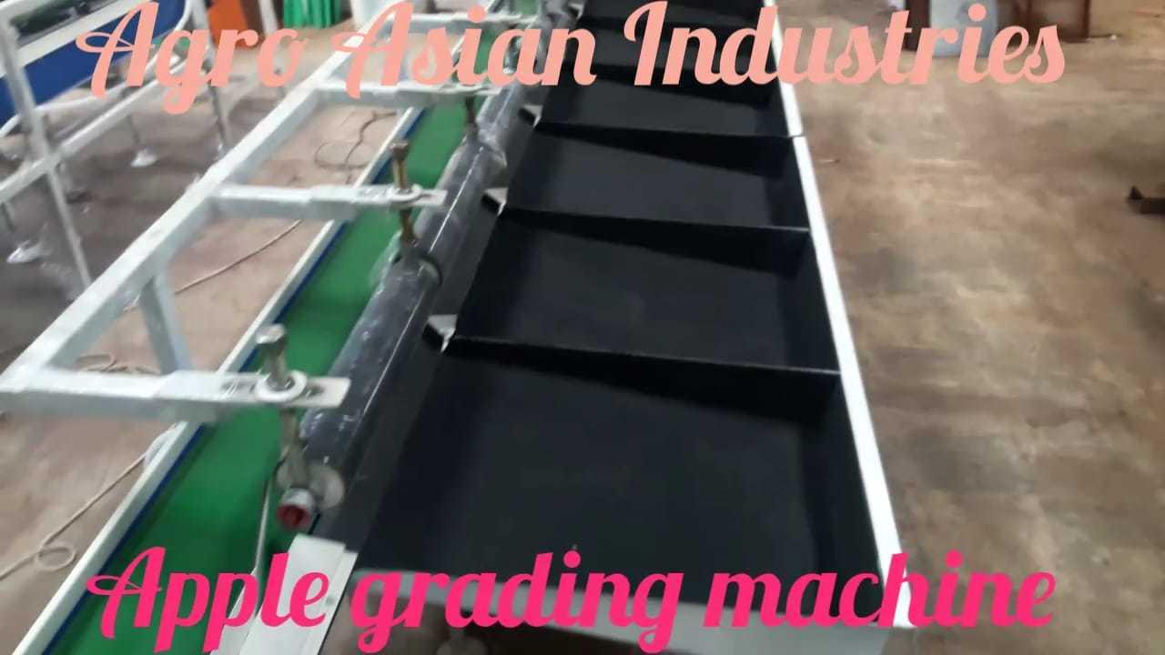 Apple Grading Machine