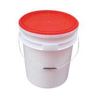Paint Plastic Bucket