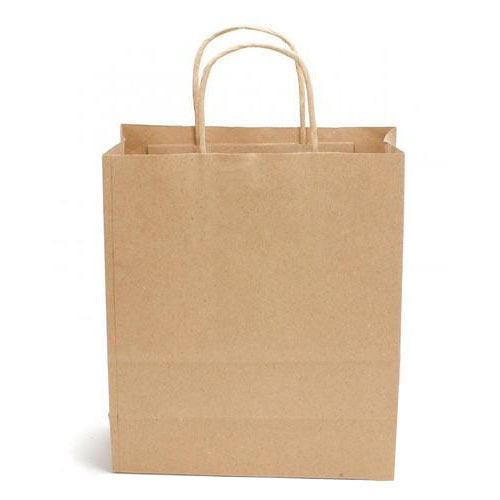 Disposable Kraft Paper Bags