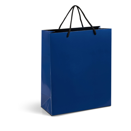 Prmotional Paper Gift Bags