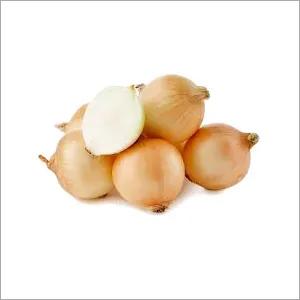 Brown Onion