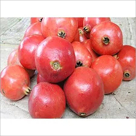 Bhagwa Pomegranate