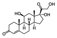 HYDROCORTISONE BASE