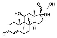 Hydrocortisone Base