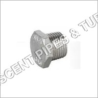 Stainless Steel Socket Weld Plug Fitting 317L
