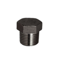 Stainless Steel Socket Weld Plug Fitting 347