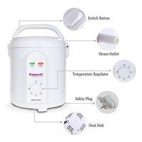 Kawachi Steam Generator For Steam Sauna bath therapy modern form of Ayurvedic Panchkarma