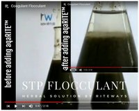 Herbal Flocculant