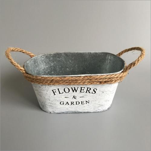 Decor Flower Plants