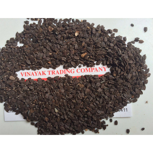 Wild Basil Seed