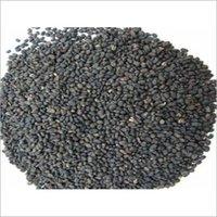 Psoralea Corylifolia Seed