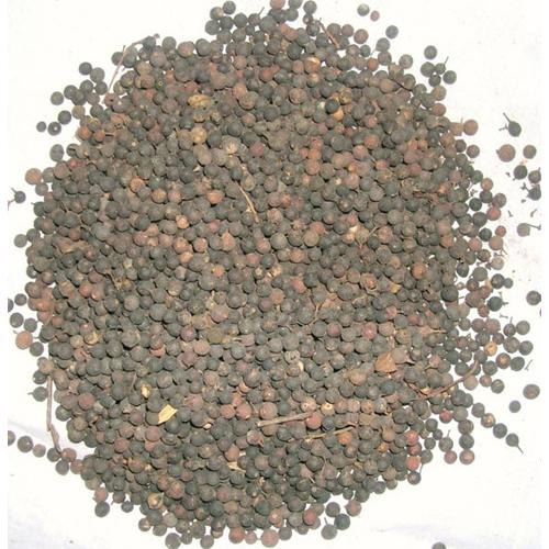 Baibrang Seed