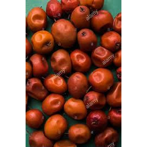 Dry Ber Red Fruit