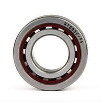 6000 High Temperature Bearing