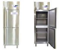 Blue Star Two Door Vertical Chiller (RC2D640A) (600 Ltrs.)