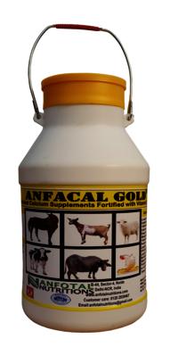 Goat & Sheep Liver Tonic (Proton L)