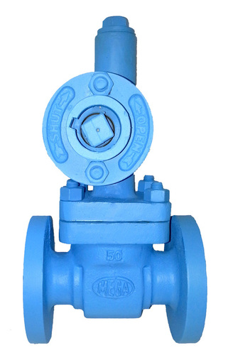 Blow Down Valves