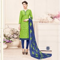 Ethnic Embroidered Salwar Suit