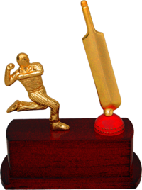 MT 3487 Cricket Metal Trophy