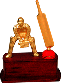 MT 3489 Metal Cricket Trophy